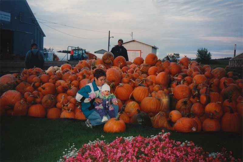 Récolte de citrouille automne 1996.